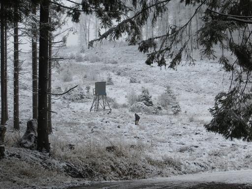 Beim Laufen im Schnee kommt der Mensch auch mal ins Grübeln (foto: zoom)
