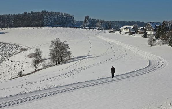 Einmal ganz alleine sein, wie dieser Spaziergänger auf einem präparierten Wanderweg neben der Loipe (foto: beuermann)