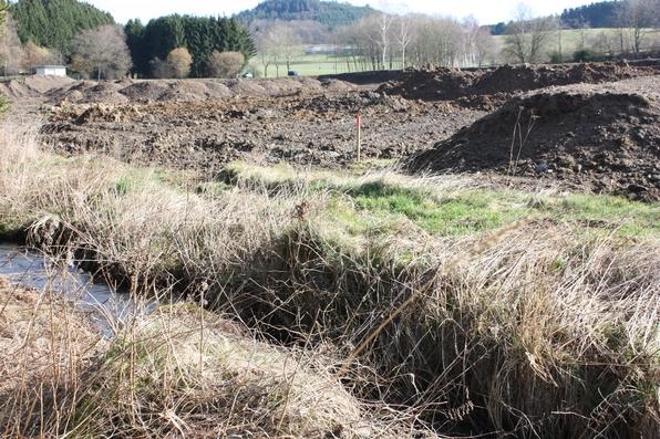 Bodenverbesserungsmaßnahmen im Bereich Sundern-Seidfeld (foto: schulte-huermann)