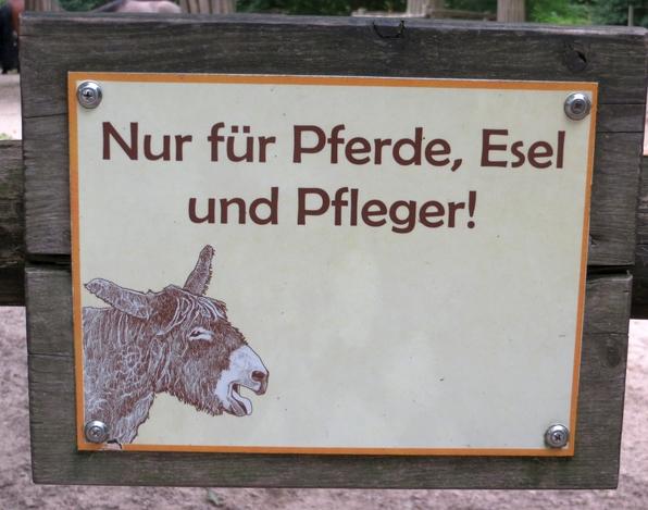 Kadenz oder Dekadenz? Rangordnung im Allwetterzoo Münster (foto: zoom)