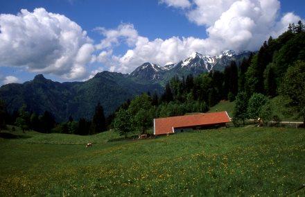 In den Chiemgauer Alpen (alle fotos: knoppik)
