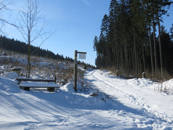 Ein makelloser Morgen auf der Ennert zwischen Silbach und Siedlinghausen. Joggen im Schnee. Geht auch.