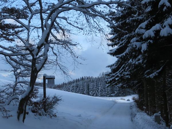 Auf der Ennert. Dieses Jahr  haben wir endlich mal wieder Winter im Hochsauerland. (foto: zoom)