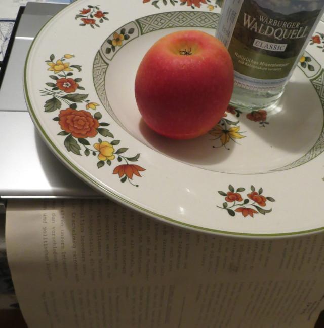 Was macht der Teller auf dem Scanner? Er beschwert ... (foto: zoom)