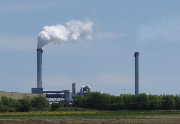 Kurz vor Brilon bin ich vom Rad gestiegen und habe die Zerstörung unserer Umwelt durch die Windenergie fotografiert. (foto: zoom)