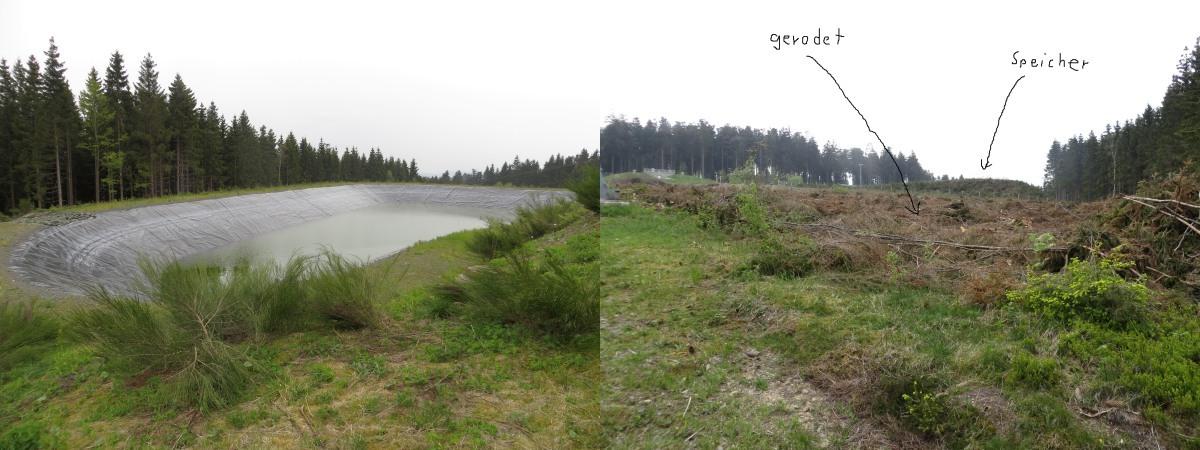 Der Speicherteich am Bremberg (links) und die gerodete Fläche unterhalb. (fotos und montage: zoom)