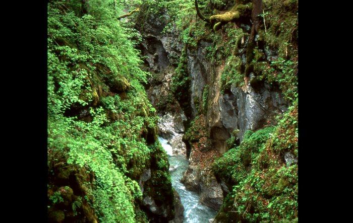 Die idyllische Marxenklamm, Naturdenkmal nahe Ramsau im Biosphärenreservat .Berchtesgaden