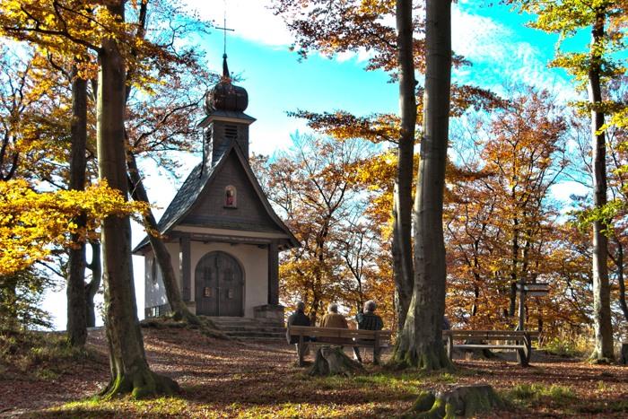 Herbstlicher Borberg (foto: Andreas Weller)