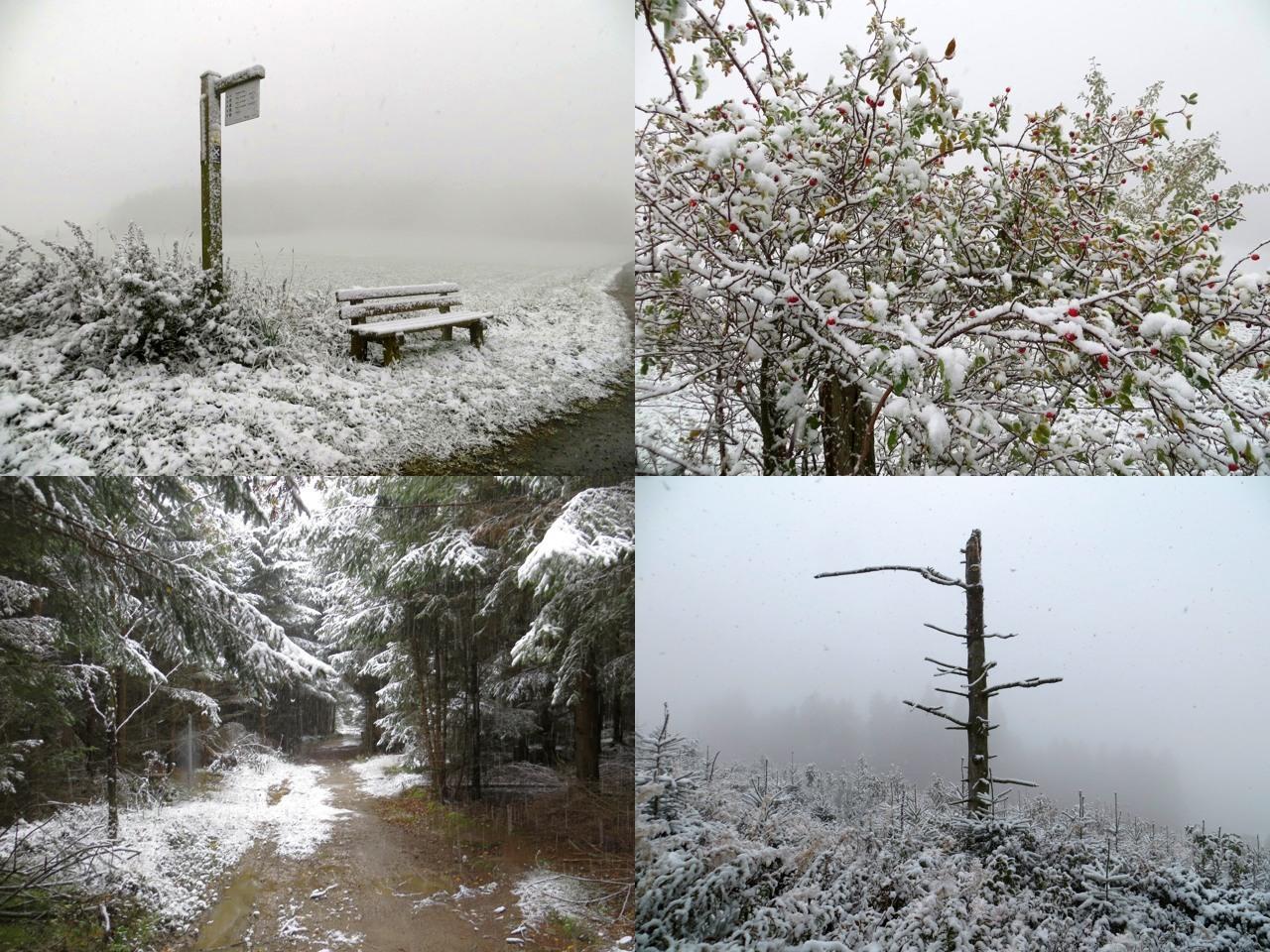 Der erste Schnee: mit Pocket-Kamera um die Himmelskrone gelaufen (fotos: zoom)