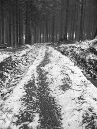 Die Sache mit dem Schnee - nur halb so wild (foto: zoom)