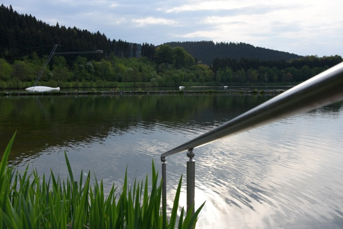 Sehr entspannt am Hillebachsee in Niedersfeld. (foto: zoom)
