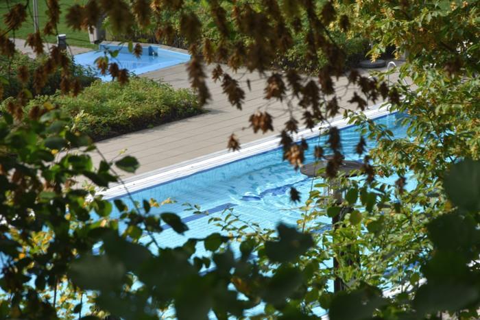 Die Bäume verdecken immer noch den Blick auf das Freibad-Becken im AquaOlsberg. (foto: zoom)
