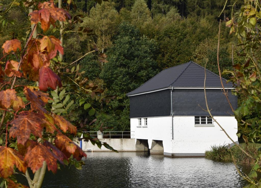 Der heutige Herbsttag am Stausee zwischen Siedlinghausen und Brunskappel. (foto: zoom)