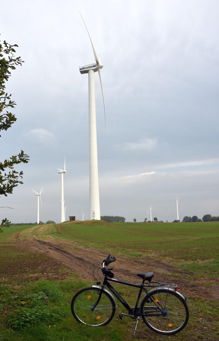 Irgendwo in der Pampa zwischen Travemünde und Lübeck. (foto: zoom)
