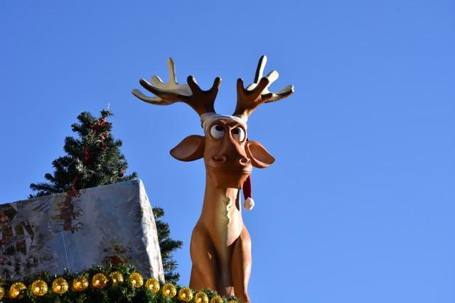 Schnappschuss auf dem Dortmunder Weihnachtsmarkt. (foto: zoom)