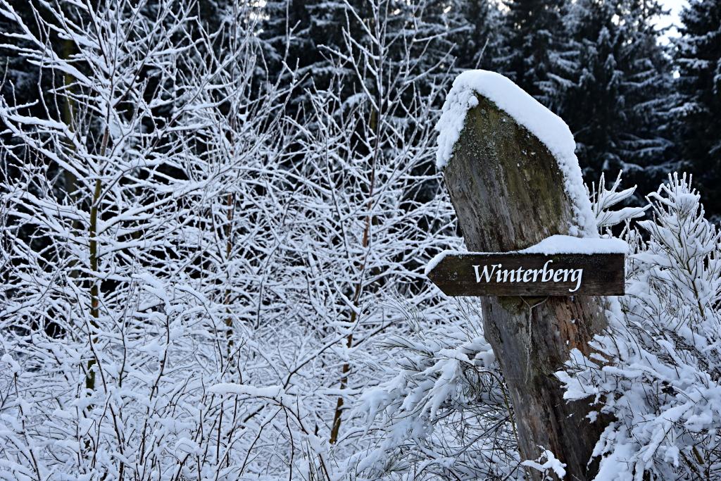 umwege drei stunden durch den schnee nach winterberg zoom. Black Bedroom Furniture Sets. Home Design Ideas